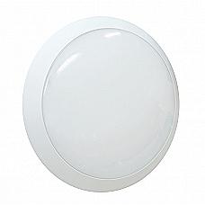 12W LED Bulkhead Light
